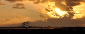 Solway Sunset near Bowness on Solway