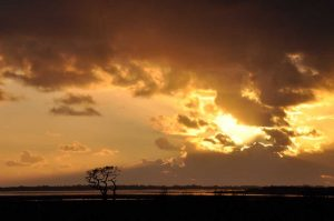 Solway Sunset