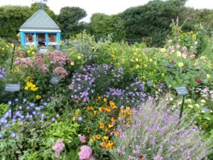 The community garden Silloth on Solway