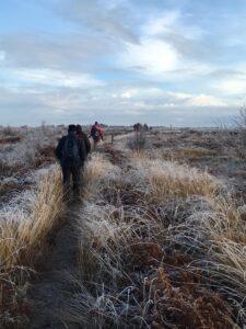 Solway fieldtrips